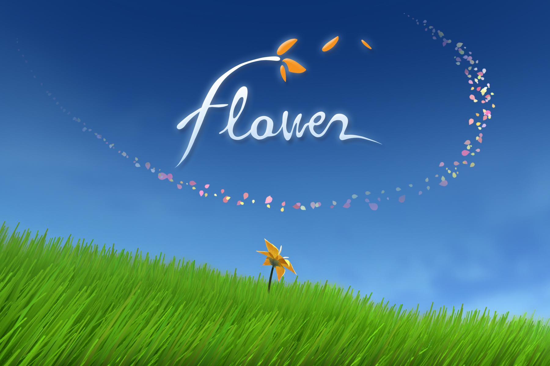 """""""Flower"""" Schriftzug mit einer auf der Wiese blühenden Blume"""