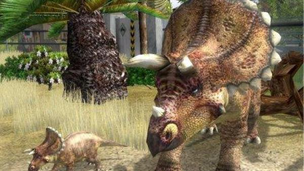 Zwei Dinosaurier aus der Nähe.