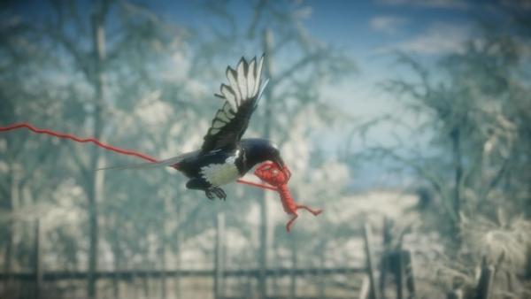 Screenshot: Yarny erfasst von einem Vogel