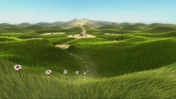 Blumen stehen in einer Reihe, dahinter Landschaft