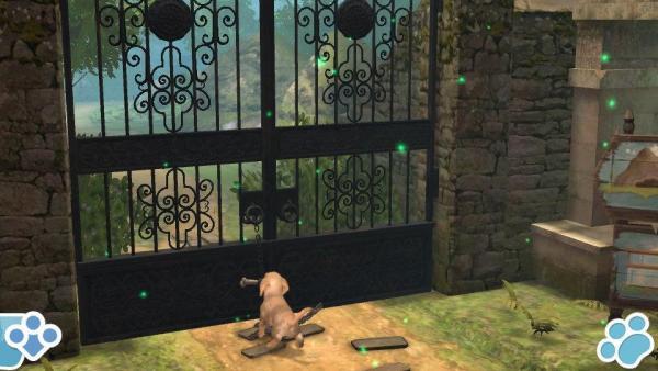 Ein Hund öffnet ein Tor.