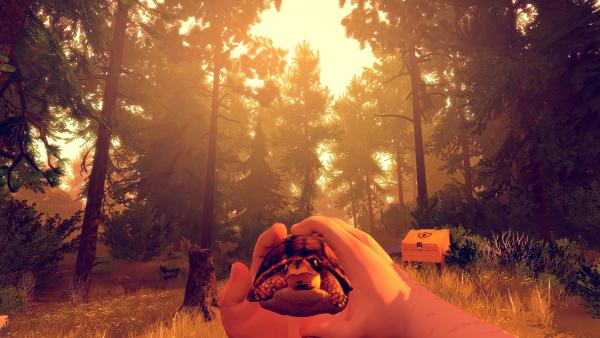 Screenshot: Spielfigur hält eine kleine Schildkröte in der Hand und trägt sie durch den Wald.