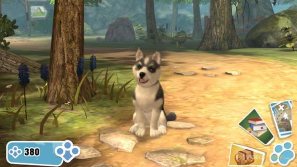 Ein Husky sitzt neben einem Baum.