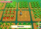 Screenshot: Verschiedene Gemüsefelder sind zu sehen.