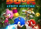 Das Cover zeigt Sonic und seine Freunde.
