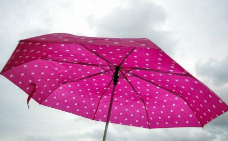 Ein rosa Regenschirm