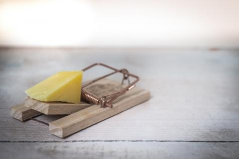 Eine Mausefalle mit einem Stück Käse