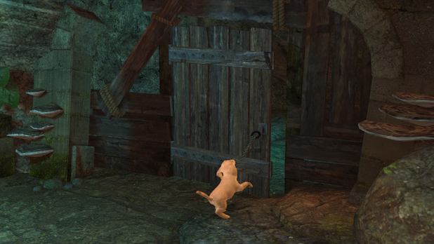 Ein Hund öffnet eine Holztür.